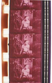"""Joseph Cornell, film still from """"Rose Hobart"""""""