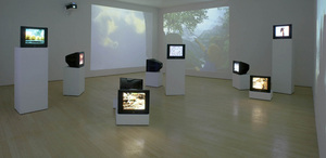 Installation view of Zoo,  Nina Katchadourian, 2007