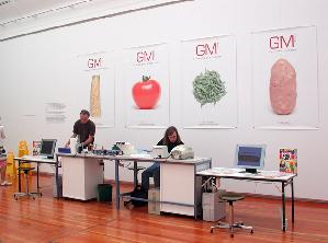 "CAE, ""Free Range Grain,"" photo documentation of interactive installation"